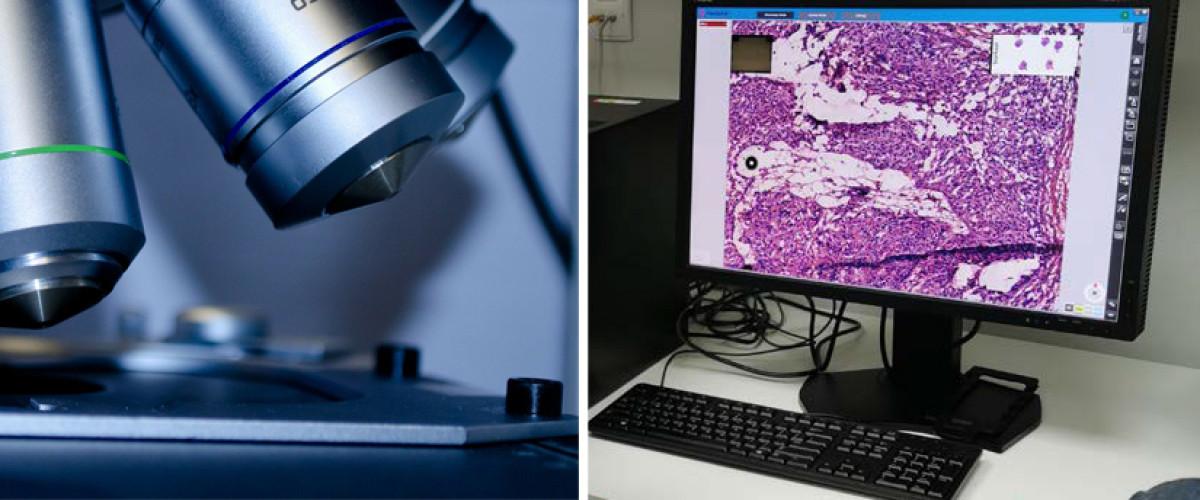 Nowa Pracownia Histopatologii Śródoperacyjnej